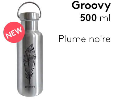 Image                 Groovy500_plume_noire